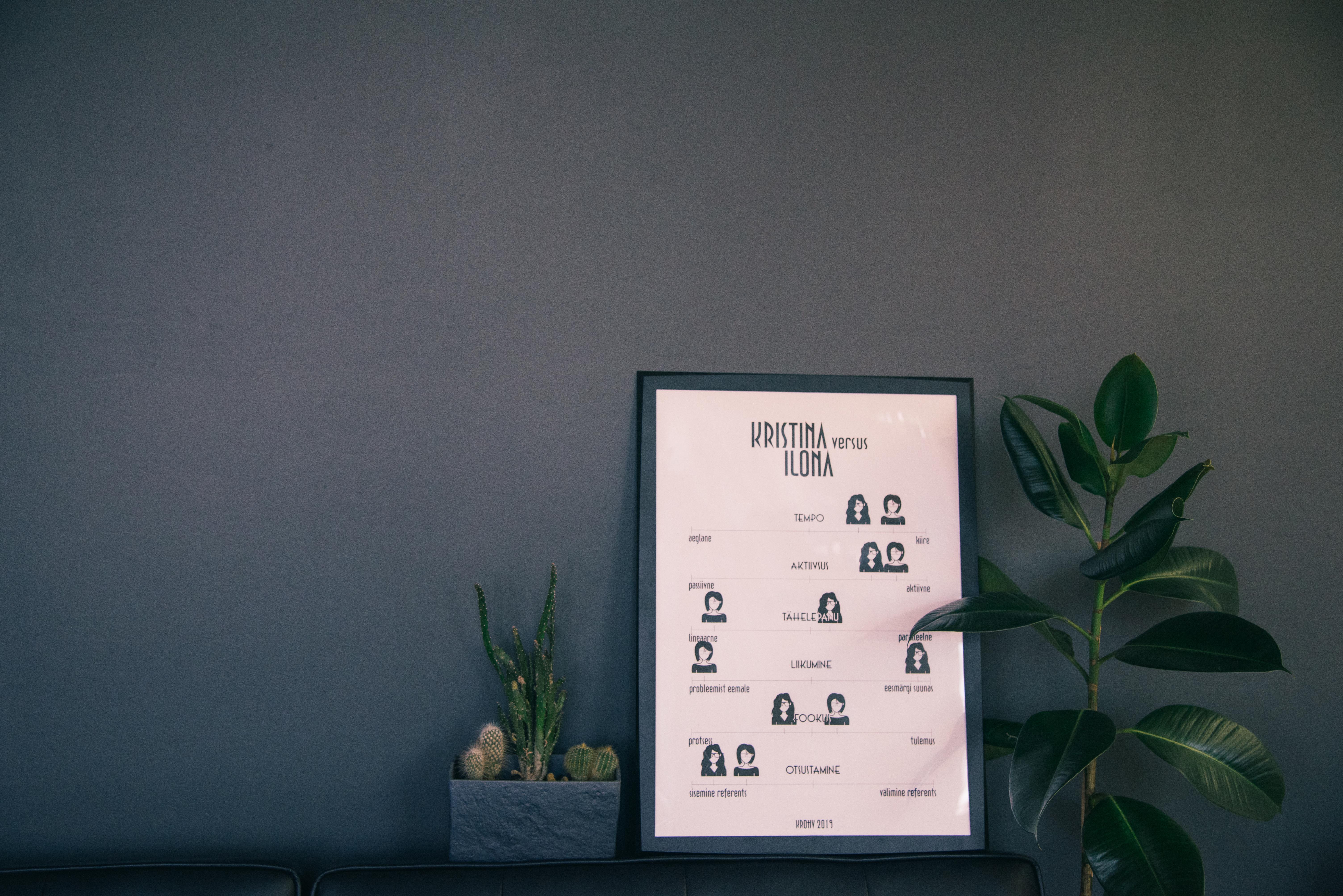 Tootefoto koolitus väikeettevõtjatele - KROHV stuudio